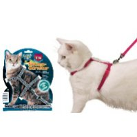 Harness, harnesses, harness for cat